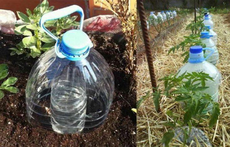 способ полива из пластиковых бутылок