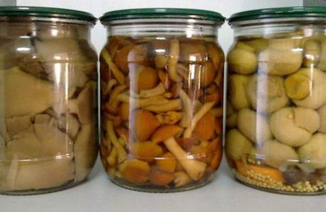 10 вкуснейших и нежнейших заготовок из грибов на зиму