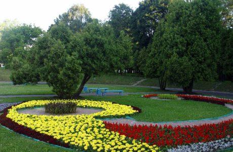 Красивое озеленение своей частной территории